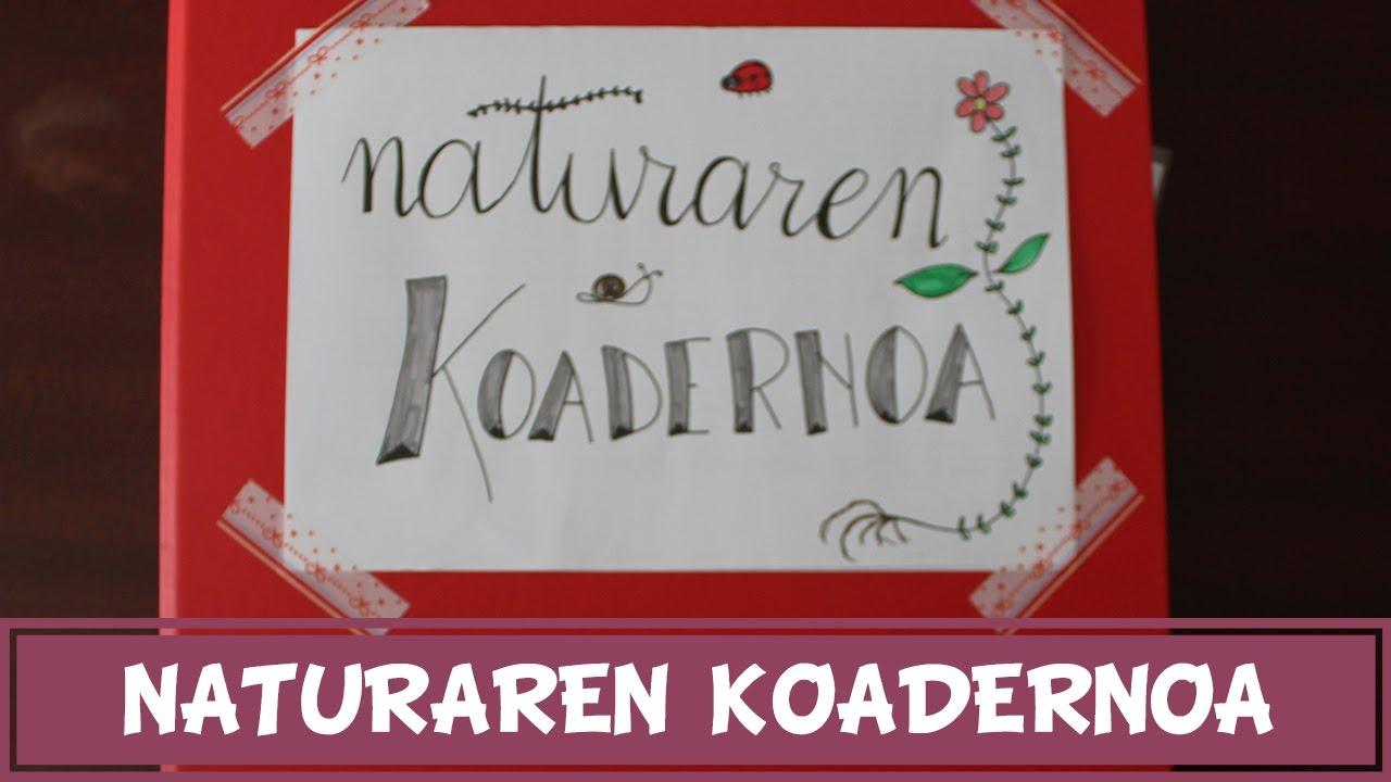 Naturaren koadernoa: bildu ditzagun naturako objektuak liburu batean!