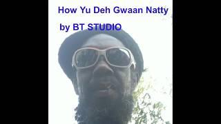 How Yu Deh Gwaan Natty