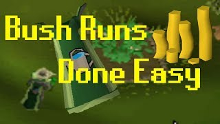 [OSRS] How To Do Bush Runs (Fast and Easy)