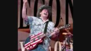 Ted Nugent  Long Haired Country Boy