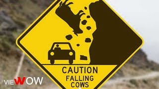 Road Signs Funny And Hilarious:  Best Traffic Symbols For Roadway Use - VIEWOW