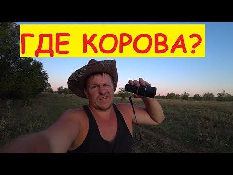 КОРОВА ПОТЕРЯЛАСЬ / Кто ищет - тот всегда найдёт)) / Семья в деревне