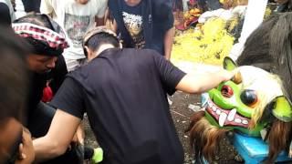 Keblak-keblak Jaranan Wongso Kenongo Part 1