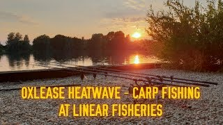 Oxlease Heatwave   Carp Fishing At Linear Fisheries