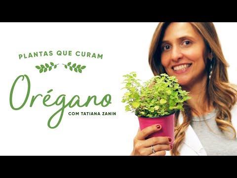 Imagem ilustrativa do vídeo: Benefícios do ORÉGANO