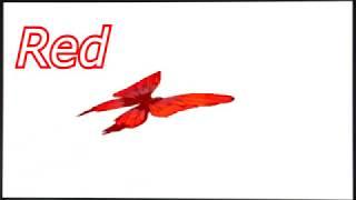 Видео про цветных бабочек для малышей  Умный мультик для детей  Мультфильм детям про цвета