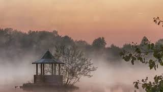 Спокойная Музыка Для  Сна Для Снятия Стресса -  Deep Sleep Music -  Background  Music