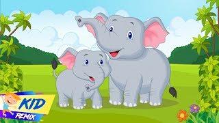 Chú Voi Con Ở Bản Đôn (Elephant) - Chú Ếch Con (Frog) - Nhạc Thiếu Nhi Vui Nhộn Sôi Động