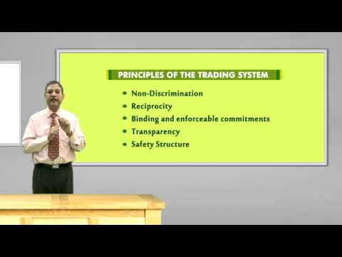 Nuosavybės teisių suteikimo akcijų mokestis