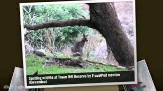 preview picture of video 'Tower Hill - Warrnambool, Victoria, Australia'