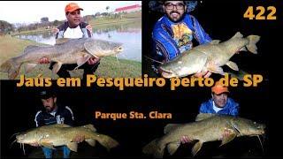 Os Jaús do Parque Santa Clara - Fishingtur na TV 422