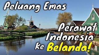 AKHIRNYA! INFO PROGRAM YOMEMA KINI JELAS SEKALI  | PELUANG EMAS PERAWAT INDONESIA KE BELANDA!!