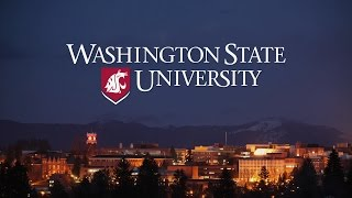 Experience Washington State University