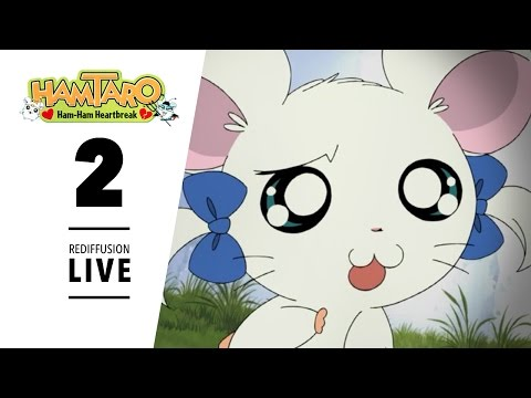 Les aventures de Gemuki - Épisode 2