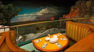 Manger Dormir Disney The Garden Grill