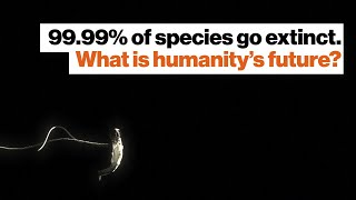 Michio Kaku: 99.99% of species go extinct. What is humanity's future?
