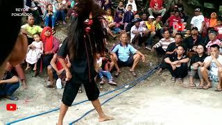 Tari Bujang Ganong Di Lereng Gunung ~ Reyog SINGO MUDHO Ds.Kambeng,Slahung, Ponorogo