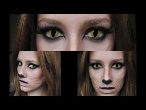 Cat Makeup Look Tutorial