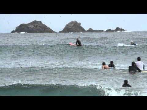 hqdefault - Surfeando olas junto a los delfines