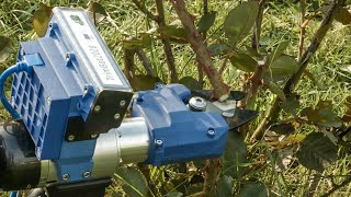 video: Automated gardener ushers in new era of 'robotony'