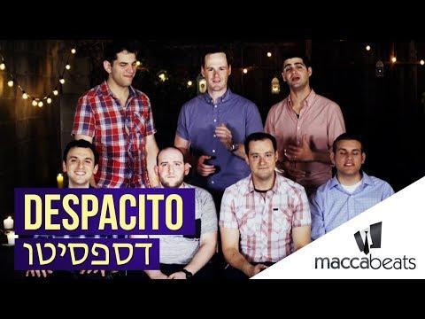 דספסיטו בעברית בביצוע של המכביטס