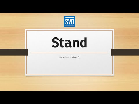 Video Stand » Definition, Meaning, Pronunciation, Origin, Synonyms, Thesaurus, and Example Sentences
