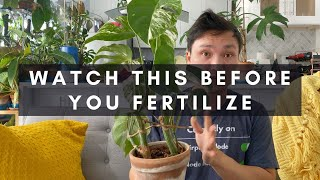 When & Why to Fertilize Houseplants | What Does Fertilizer Really Do for Your Indoor Plants | Ep 26