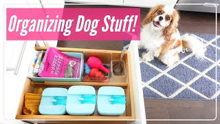 🐶How I Organize My Dogs Stuff | Organizing Inspiration 🎾