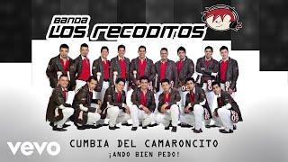 Banda Los Recoditos   Cumbia Del Camaroncito (Animated Video)