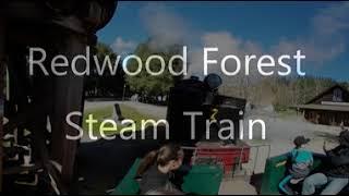 redwood forest steam train