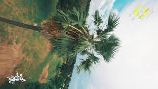 KEEP CALM AND FLOW - FPV Freestyle (4K)