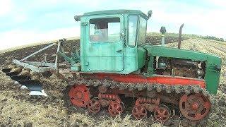 ДТ-75 и МТЗ-82 на вспашке поля после кукурузы, подсолнуха, ячменя  #СельхозТехника ТВ