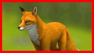 СИМУЛЯТОР ЛИСЫ #2 ЗАБЕРЕМЕНЕЛА Симулятор Жизни Зверей WildCraft про котят и собак от ДЕТСКИЕ ИГРЫ