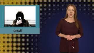 TV Budakalász / Budakalász Ma / 2021.02.26.