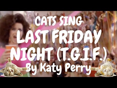 Cats Sing Last Friday Night (T.G.I.F.) by Katy Perry | Cats Singing Song