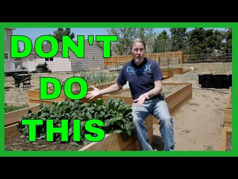 , title : 'Lessons for Beginner Gardeners (9 Tips)