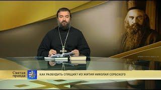 Протоиерей Андрей Ткачёв. Как разбудить спящих? Из жития Николая Сербского