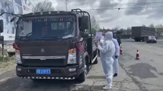 В Китае рядом с российской границей на карантин в связи с COVID-19 отправлены 108 миллионов человек.