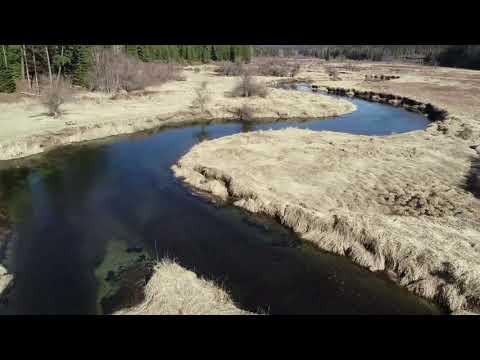 Bull River Runs Through It