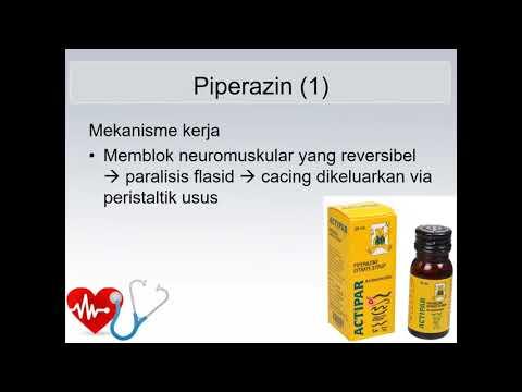 Pinworm tünetek kezelésének fóruma
