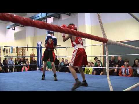 Schüler-Boxmeisterschaften