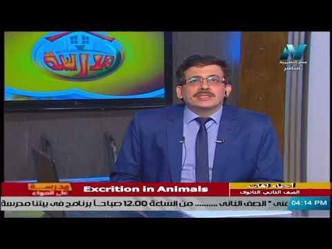 أحياء لغات للصف الثاني الثانوي 2021 ( ترم 2 ) الحلقة 1 - Excrition in Animals