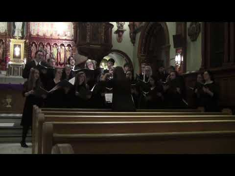 Northeast Catholic College's Polyphony Tour 2017 - Dixit Maria