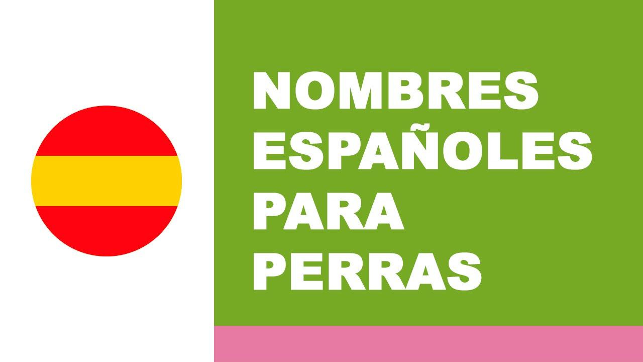 Nombres españoles para perras