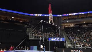 Shane Wiskus (USA) - High Bar - 2020 American Cup