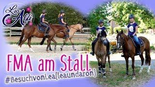 Lia & Alfi - FMA im Stall - Besuch von Lea (leaundaron)