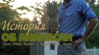 История об ананасах - (посвящение всего себя Богу) Отто Конинг (Otto Koning)