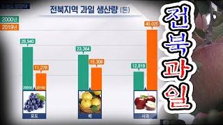 과일 소비 변화