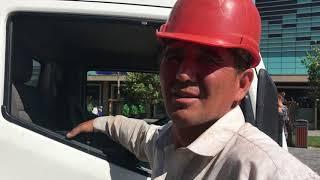 На Арбате в Алматы рубят деревья