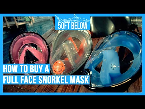 Should You Buy a Full Face Snorkel mask? | Buyers Guide